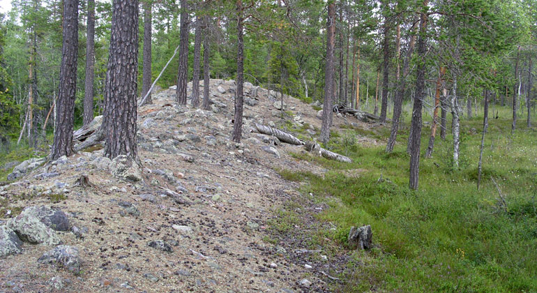 Stenformation i skogen
