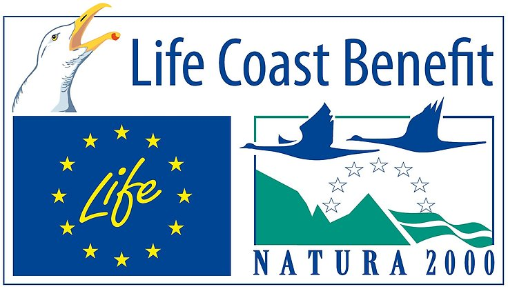 Logotype Life Coast benefit